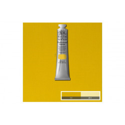 Prof acrylic Azo Yellow Medium 019