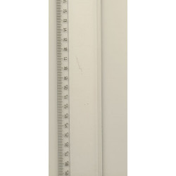 Lineal 50 cm